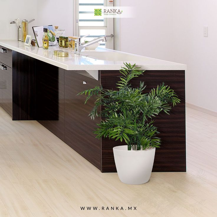 M s de 10 ideas incre bles sobre plantas artificiales en for Plantas decorativas artificiales df