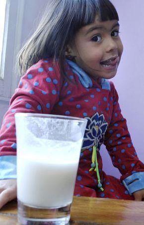 Leche.-La leche es un alimento muy completo, puesto que no solo aporta proteínas de muy alto valor biológico,  energía en forma de carbohidratos y grasas cuya cantidad dependerá del tipo de leche consumida, sino que también aporta vitaminas y minerales de gran importancia no sólo para nuestro crecimiento y desarrollo óseo, sino también para una adecuada función muscular y de otros tejidos de nuestro organismo.  La industria alimentaria ha intervenido en la leche, pudiendo ofrecer en este…