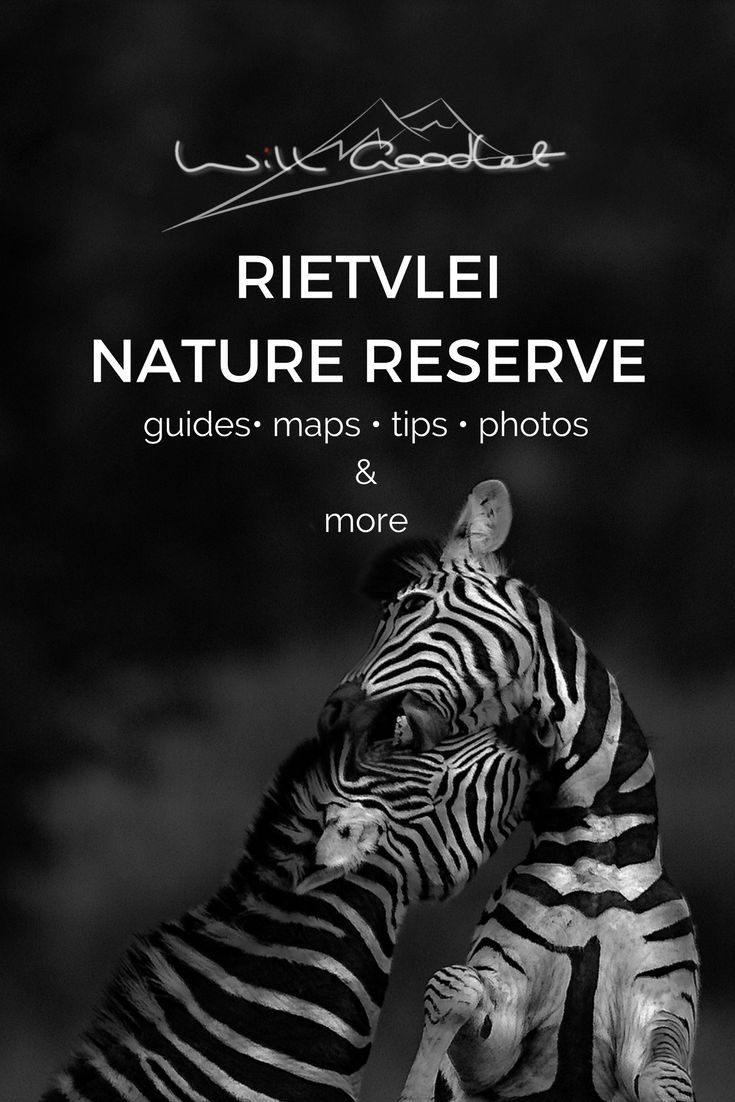 Rietvlei photography, Rietvlei map, Rietvlei gate times, opening times, learn photography, Rietvlei activities, Rietvlei Dam, Marais dam, wildlife in pretoria