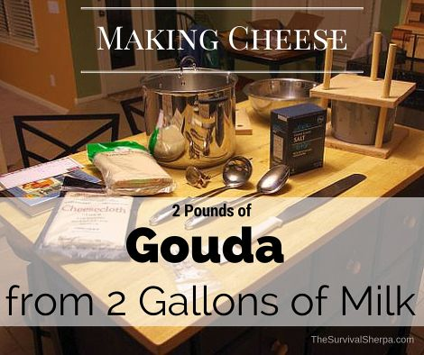 Making Cheese- 2 Pounds of Gouda from 2 Gallons of Milk - TheSurvivalSherpa.com