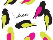 Kea - by A Side Project
