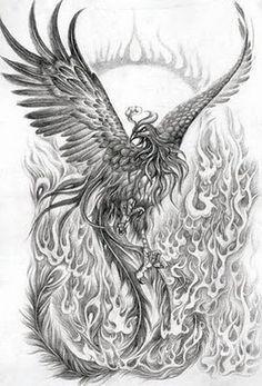 japanese phoenix outline - Google Search