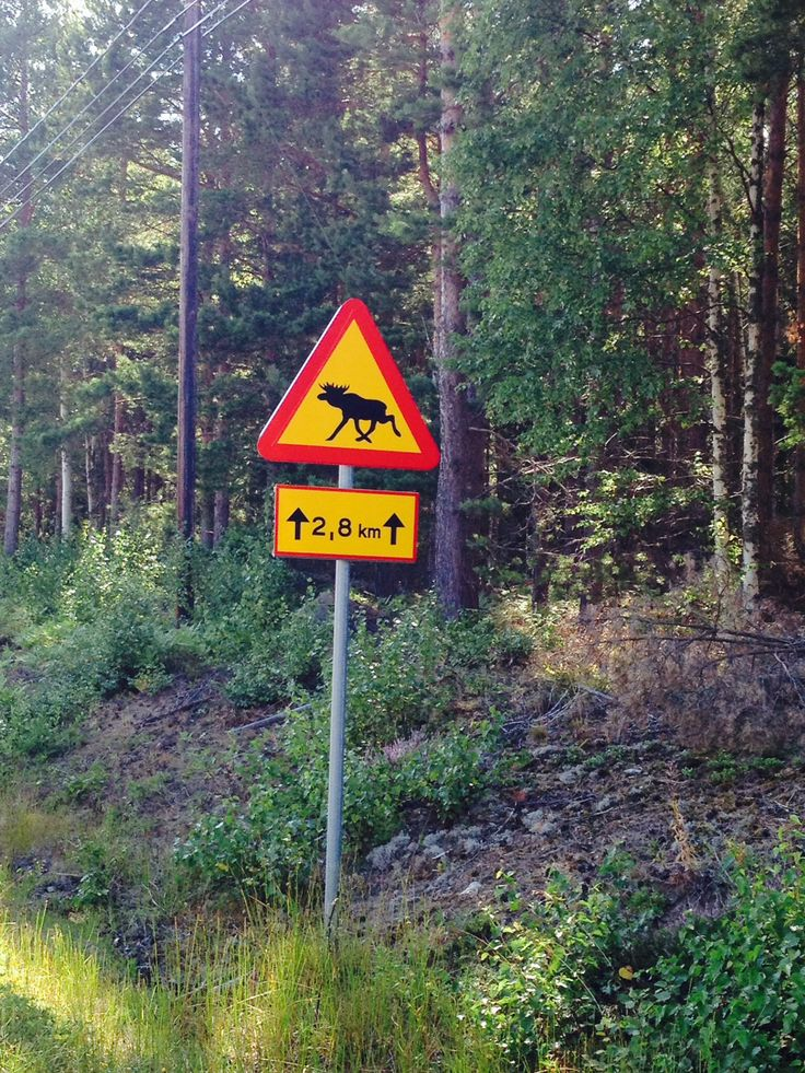 Aland finland