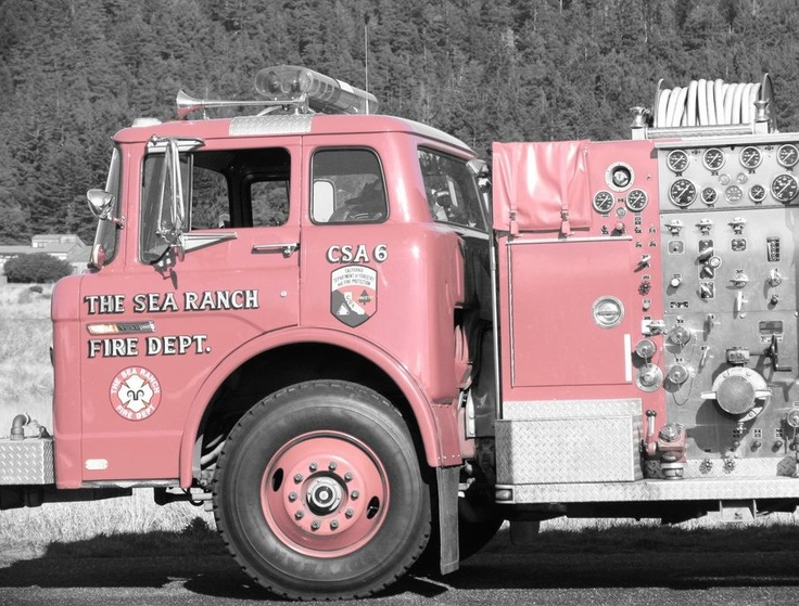 I love our Firemen & pink