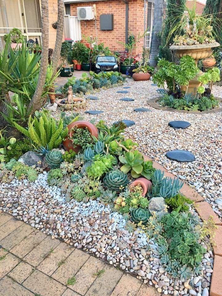 46+ Front yard succulent landscape ideas in 2021