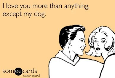 I love you more than anything except my dog