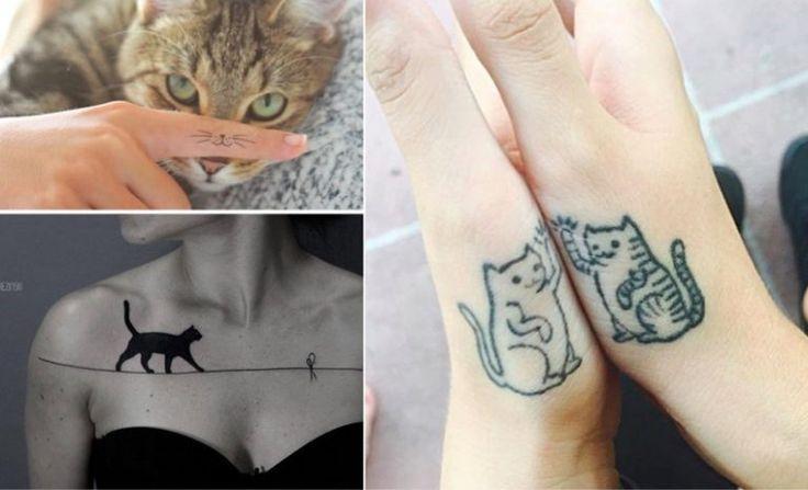 25 inspirations des plus beaux tatouages de chat