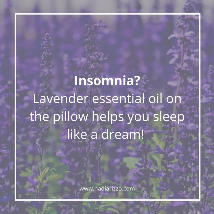Insomnia? Lavender essential oil on the pillow helps you sleep like a dream!    #tips #essentialoils #lavender
