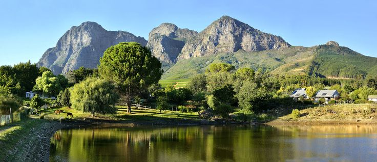 City, Winelands and Wildlife Special | Rhino Africa