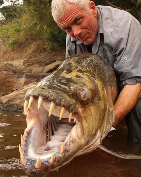 I found a great picture of my celebrity boyfriend hanging out with my ex husband's new girlfriend!    #lmfao #rivermonsters #Imsodamnfunny