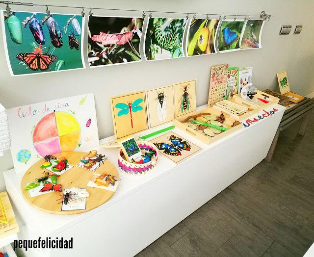 Me hace mucha ilusión mostrarte hoy nuestro proyecto Montessori sobre los insectos . Ha sido un proyecto que ha ido a más. Voy a enseñ...