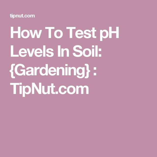How To Test pH Levels In Soil: {Gardening} : TipNut.com