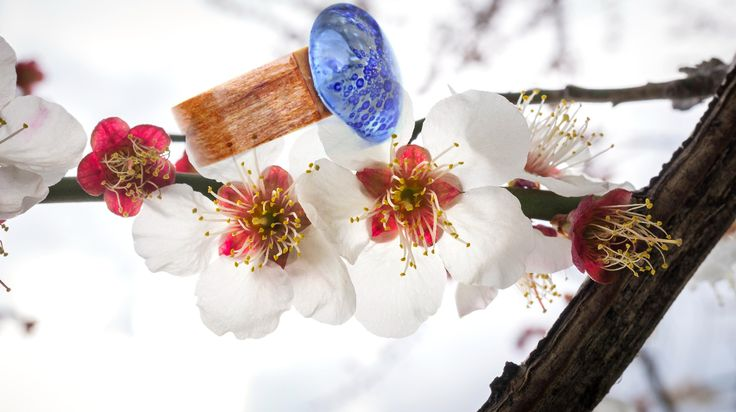 """Ring """"Spring Time"""", one-of-a-kind ring, manufactured using wood and blue glass with tiny bubbles, entirely process of manufacturing in GlassIdeas studio. Manufactured and Copyright Pro deas Trade SRL Romania"""