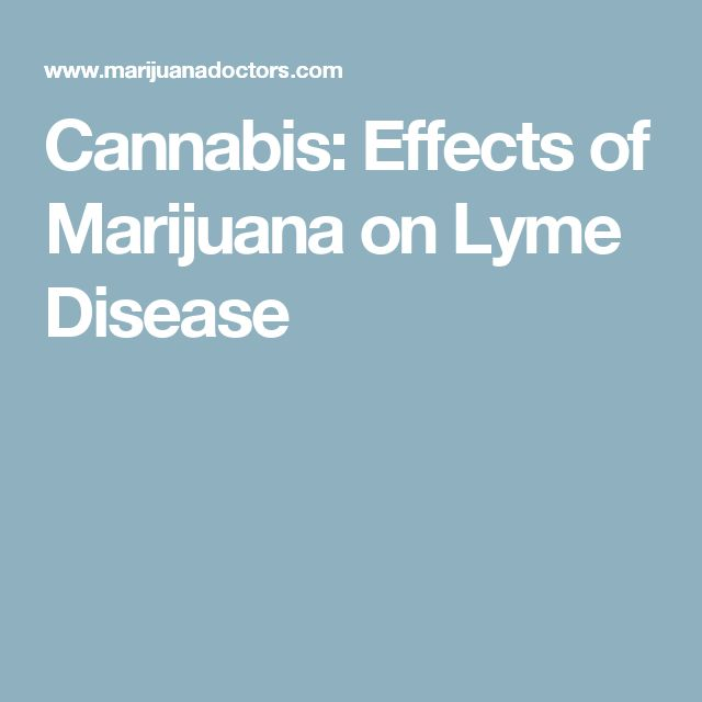 Cannabis: Effects of Marijuana on Lyme Disease