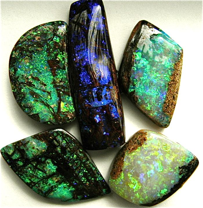 Various pieces of opalized wood from the Yowah opal field...Bill Kasso