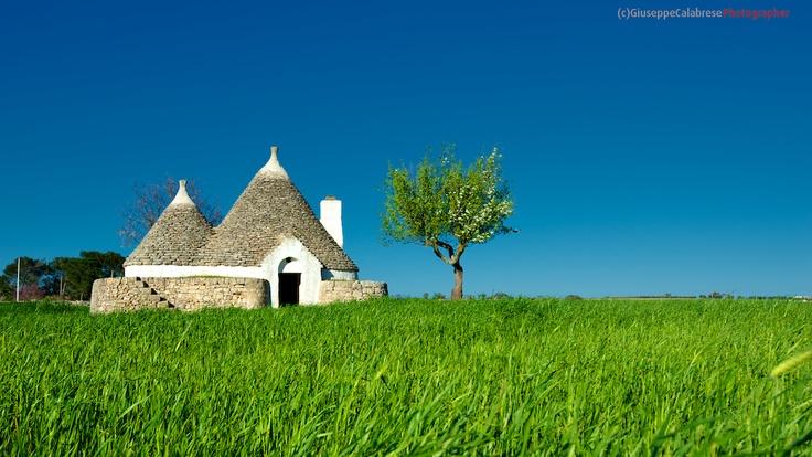 Puglia Trulli in aperta campagna Alberobello