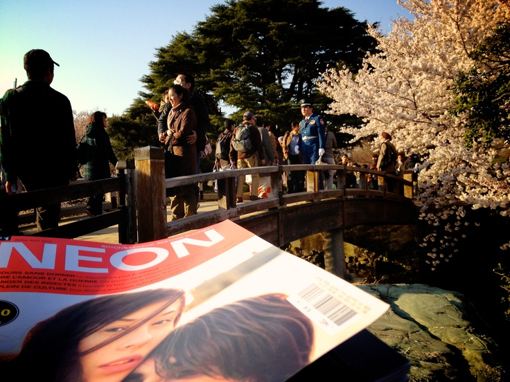 Photo taken at Shinjuku Gyoen, the most popular spot in Tokyo for cherry blossom viewing, by my cousin Caroline