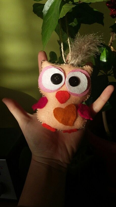 Little felt owl