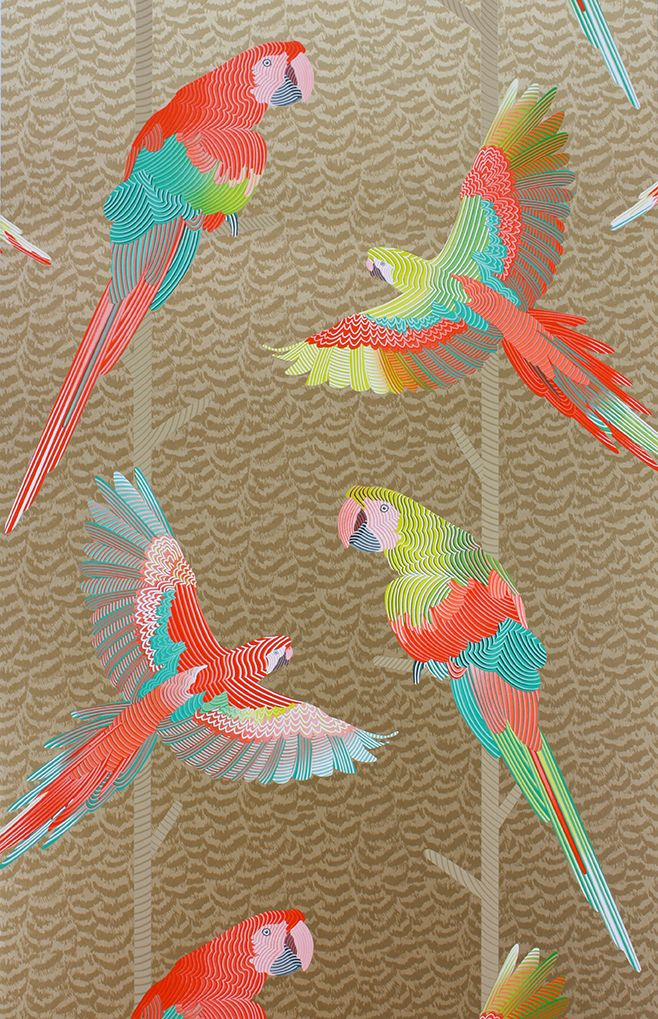 Matthew Williamson Arini Wallpaper Osborne And Little | TM Interiors Limited