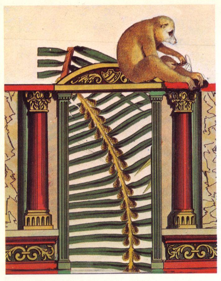 Commonplaces, 1971 (frontispiece), Max Ernst