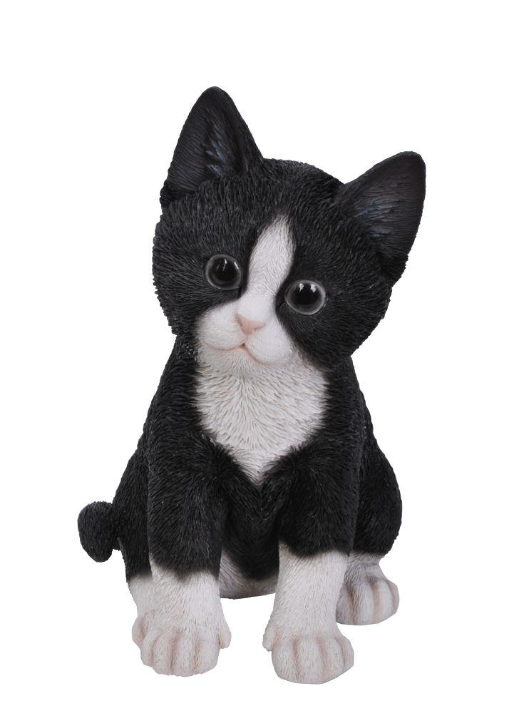 A Loja do Gato Preto | Gatinho Preto/Branco  #alojadogatopreto