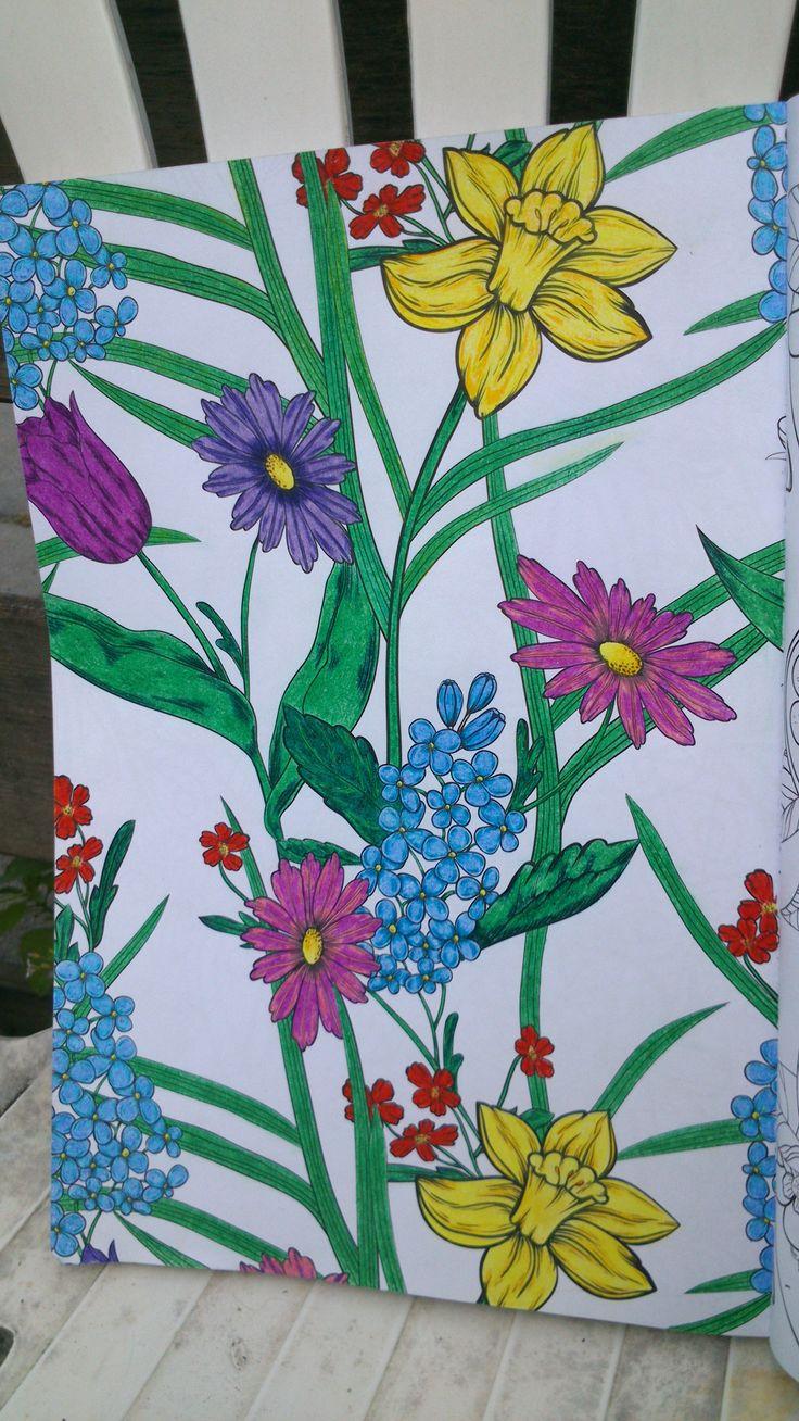 De Enige Echte Kleurboek Voor Volwassenen VanBook SitesJohanna BasfordBlogHtmlColouring