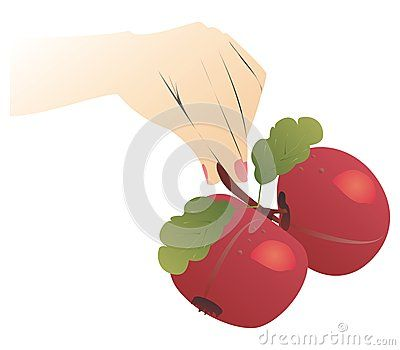 #hand holding two #big #apples