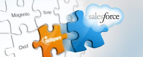 Die salesforce-Schnittstelle von mailingwork sorgt für das perfekte Zusammenspiel von Customer Relationship Management (CRM) und E-Mail-Marketing.