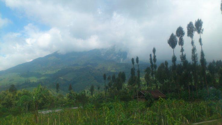 mountain Dieng, wonosobo