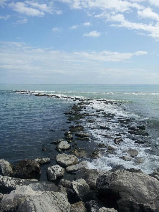#Pesaro Mare, Bandiera blu