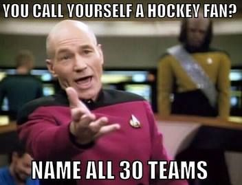Red wings, Rangers, Blackhawks, Bruins, Maple leafs, Canadians, Flyers, Hurricanes, Capitals, Jets, Senators, Panthers, Lighting, Predators, Avalanche, Canucks, Oilers, Ducks, Kings, Coyotes, Stars, Devils, blue jackets, penguins, flames, wild, sabers, Islanders, Blues and, sharks BOOM!!! Got them :)