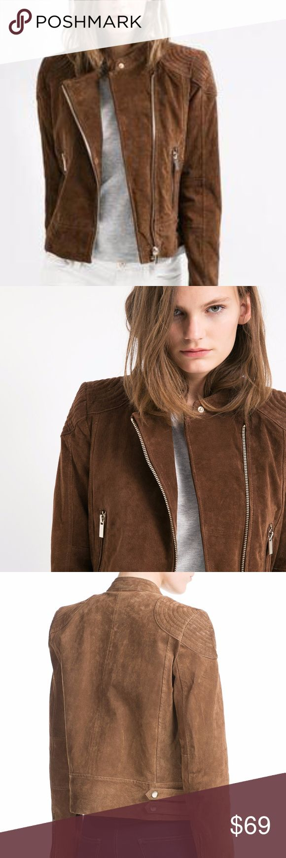 Mango Women's Brown Peccary Biker Jacket Beautiful Peccary leather biker jacket with stitched padded shoulders. Snap button fastening collar, asymmetric zip through front and twin side pockets. Belted waist and zipped cuffs. Mango Jackets & Coats