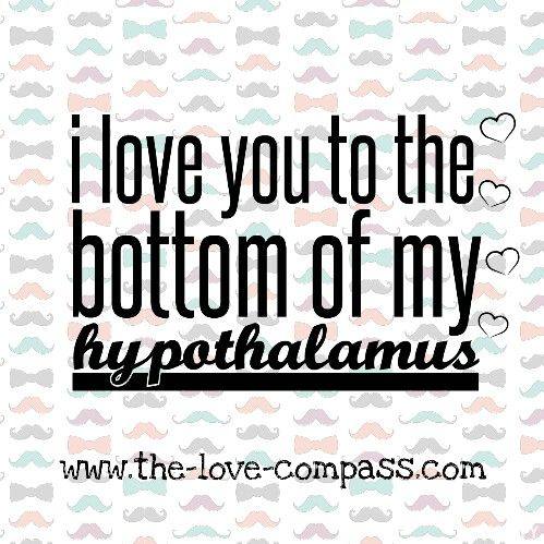 I love you from the bottom of my hypothalamus! #geekjoke #nerd #thelovecompass