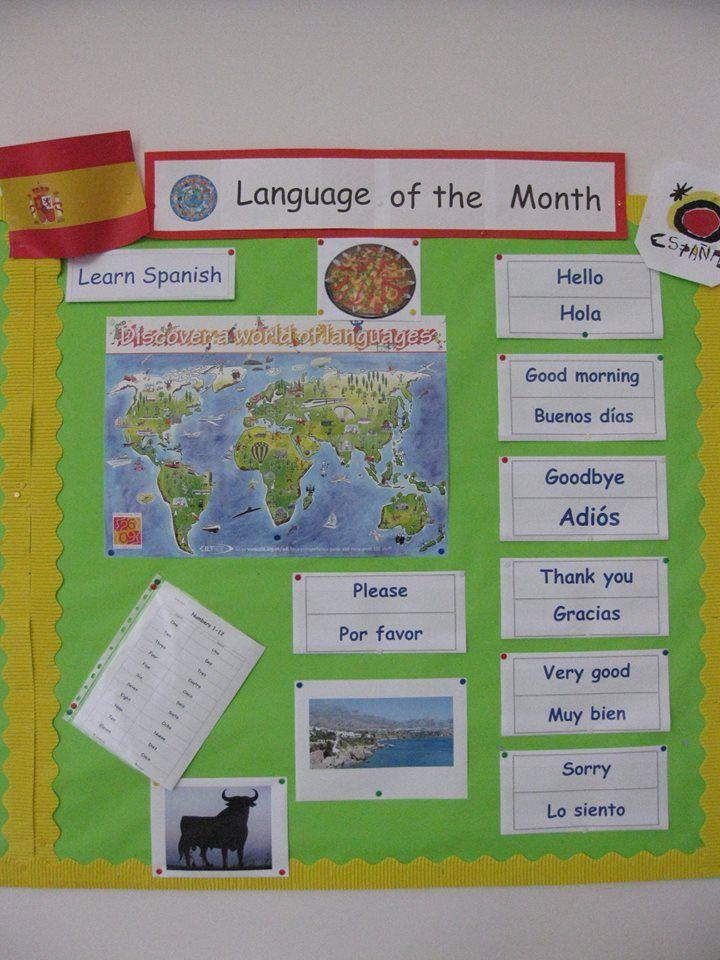 Modern Language Classroom Displays ~ Best your classroom displays images on pinterest