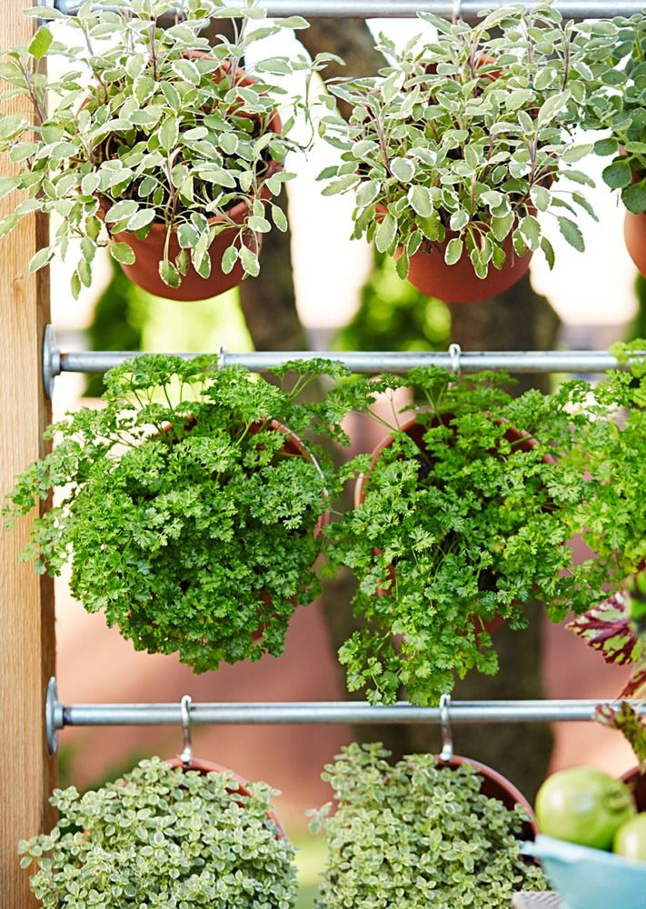 how to build a herb garden wall