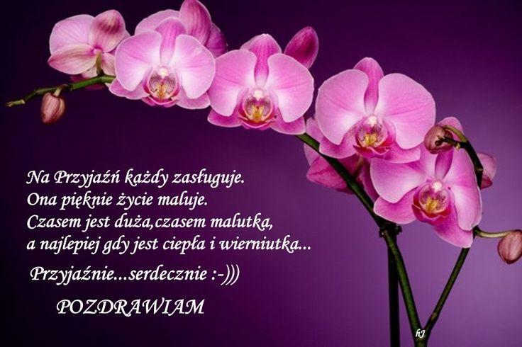 http://s1.zmniejszacz.pl/114/przyjeznie_pozdrawiam__828246.jpg