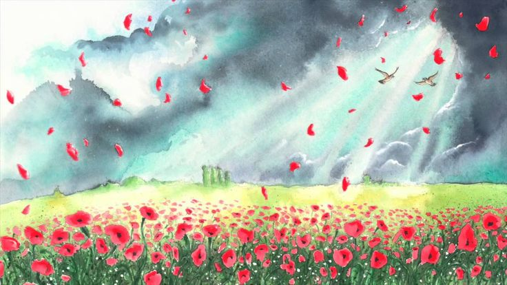 Where The Poppies Now Grow - A Beautiful way to explain war and our history to our children.