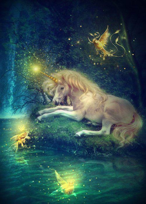 Mystical Unicorn and Fairies