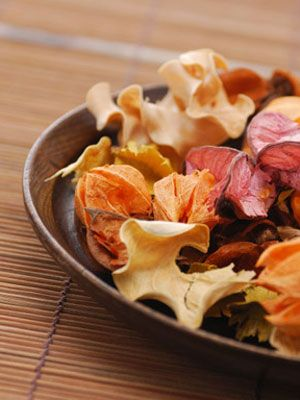 Happy first day of Fall! Spice up your sick day by making some homemade potpourri!