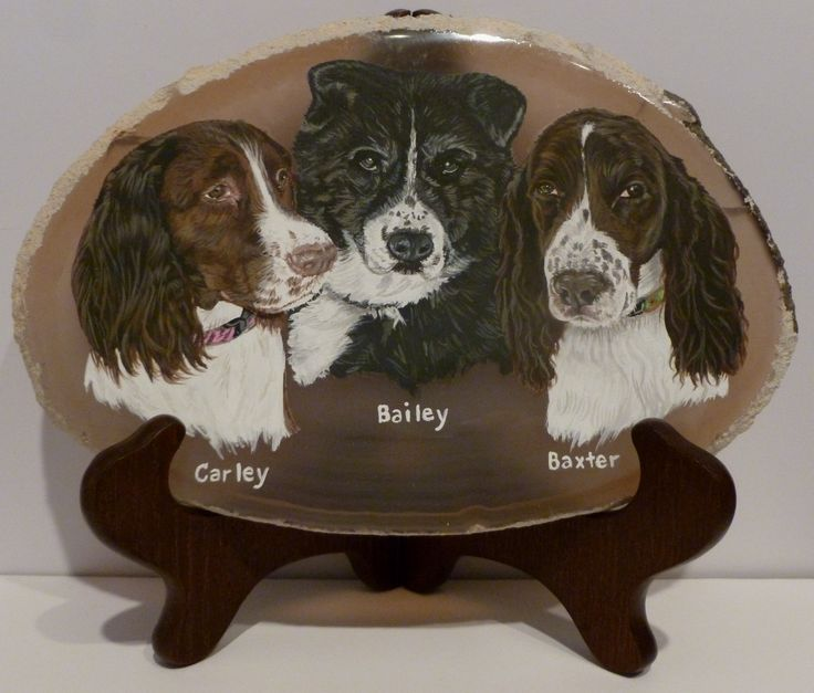 Carley, Baxter and Bailey Donation for ESRA Acrylic on Agate