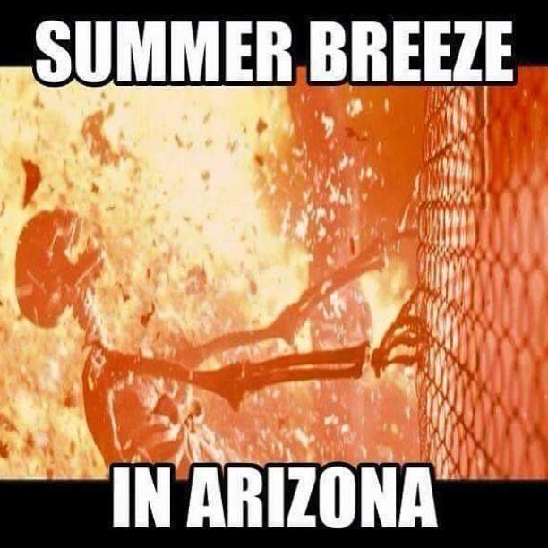It S A Dry Heat 25 Memes That Sum Up Tucson Summers Entertainment Tucson Com Summer Memes Funny Summer Memes Arizona Humor