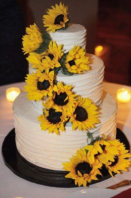 Our wedding cake by Tipsy Cake--Carrot cake with cream cheese frosting on the bottom an chocolate cake with peanut butter on to