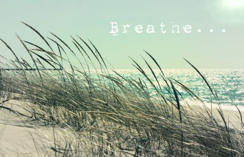 .: Peace Warriors, Beaches, Quotes 3, Quotes Inspiration, Breath 3, Summer Dreams, Summer Lovin, Inspiration Quotes, Capes Cod
