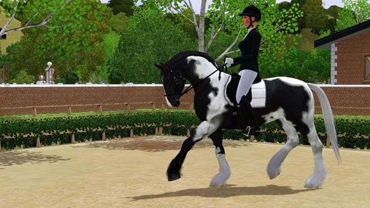 sims 3 pets how to clean horse