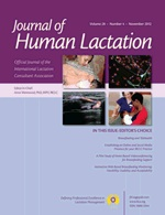 Establishing an Online and Social Media Presence for Your IBCLC Practice: Journal of Human Lactation November 2012 by Amber McCann, IBCLC and Jeanette McCulloch, IBCLC