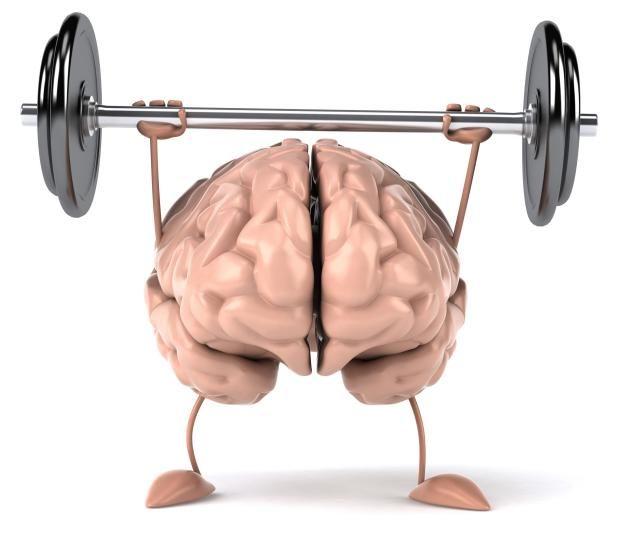 El programa de estimulación que compartimos a continuación contiene alrededor de 600 fichas para trabajar la memoria, siendo útil para los profesionales que trabajan con pacientes adultos que tiene...