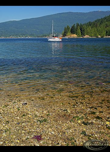 View from the beach at Barnet Marine Park in Burnaby near Vancouver, British Columbia, Canada.  Lots of starfish to be seen at low tide!  Photo taken by me (Ann Badjura)