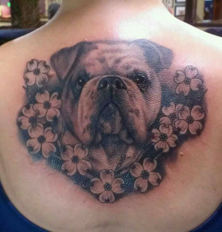 best 25 bulldog tattoo ideas on pinterest french bulldog tattoo dog portrait tattoo and. Black Bedroom Furniture Sets. Home Design Ideas