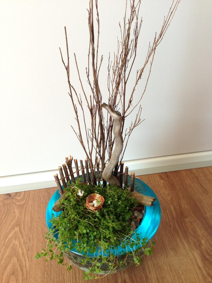 Birds nest with eggs magic garden in turquoise bowl @Zamfyre Designs.