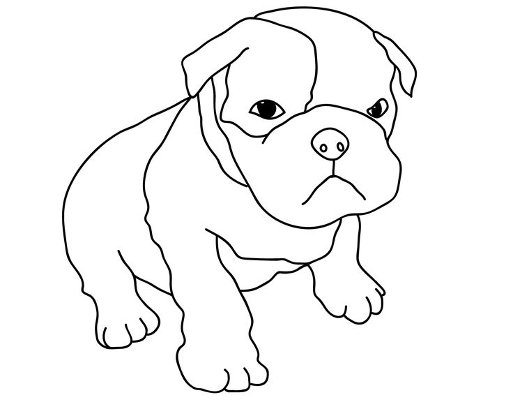 66 best Dogs images on Pinterest Colouring Colouring pages and Dog